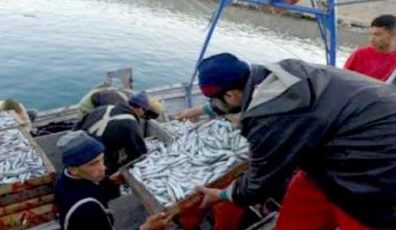 Pêche : 1000 crédits seront destinés aux micro-entreprises en 2022