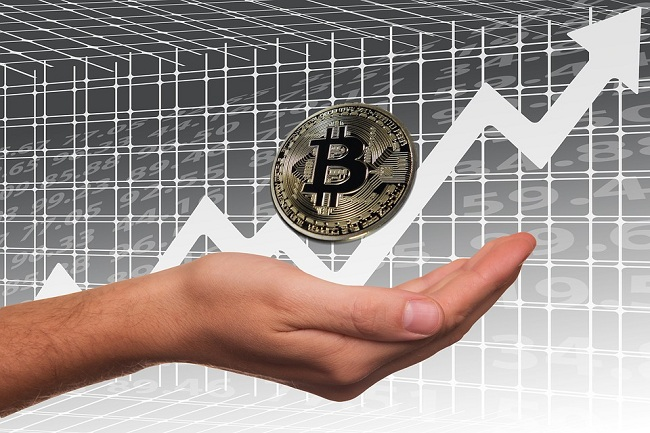 Cryptomonnaie : le bitcoin franchit la barre historique des 50 000 dollars