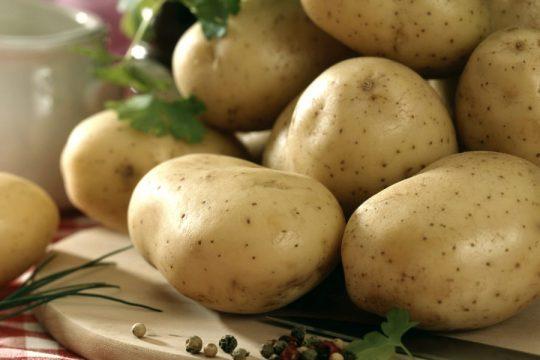 Image pomme de terre