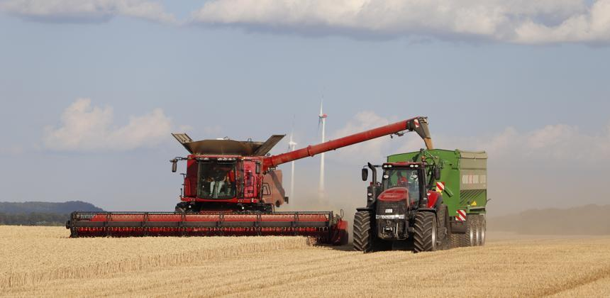 En dépit de la hausse des cours : l'Algérie continue de s'approvisionner en blé