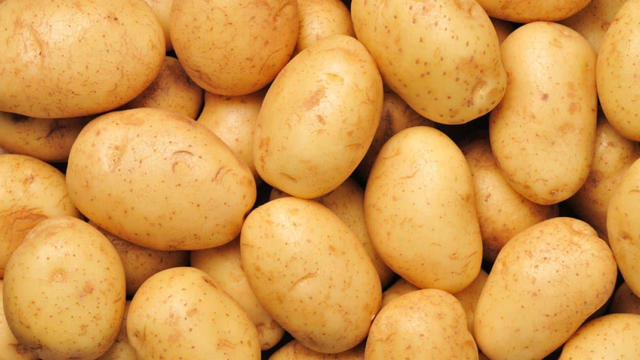 Le prix de la pomme de terre frôle les 100 DA le Kg
