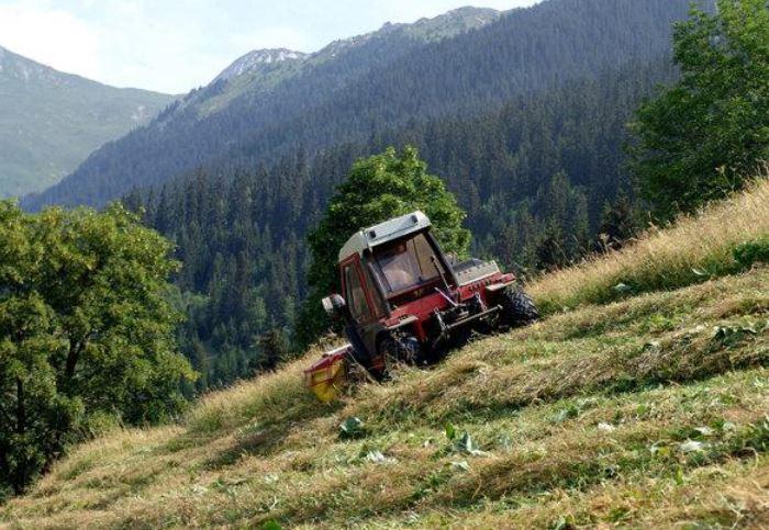 « Les banques algériennes tournent le dos à l'agriculture » (Experts)