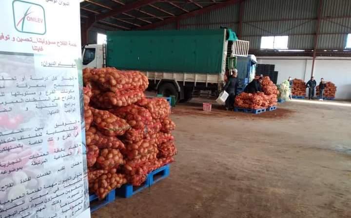 Le déstockage de la pomme de terre se poursuit à Ain Defla