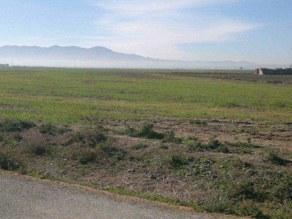 Concessions foncières : plus de 6000 hectares récupérées par l'Etat depuis avril