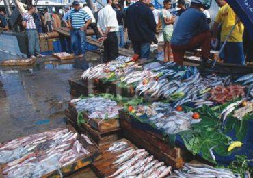 Pêche : la vente directe de poisson à la «criée» bientôt interdite aux pêcheurs